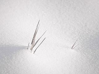 SnowPS3