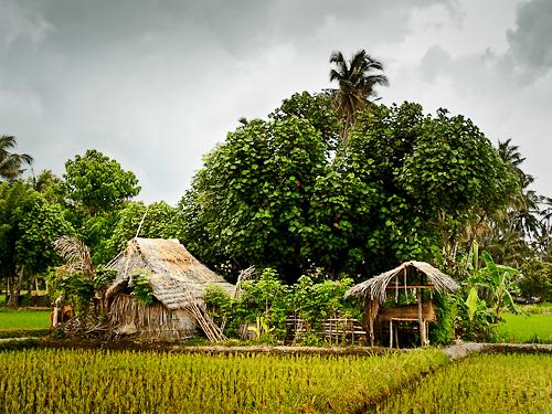 Bali2-23