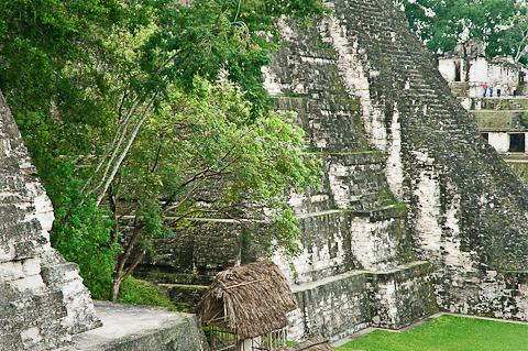 Tikal-4