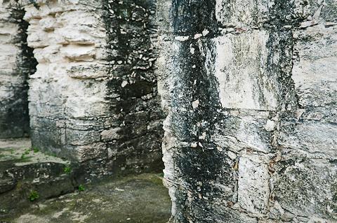 Tikal-6